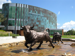 University of South Florida (Mascot - Bull)